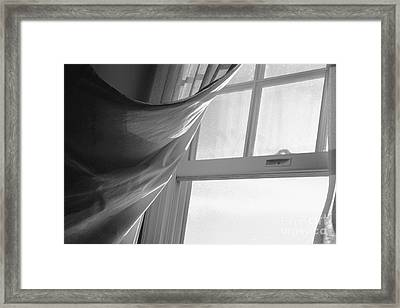 Morning Breeze Framed Print