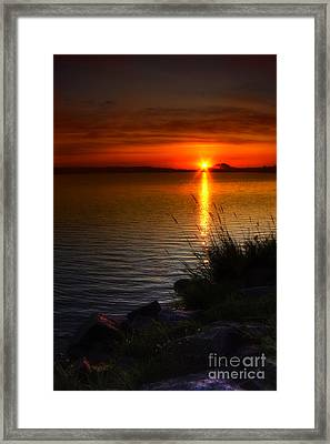 Morning By The Shore Framed Print