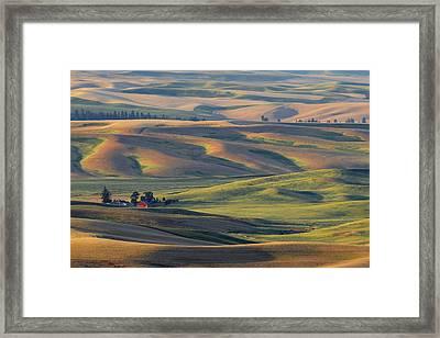 Morning Calm Framed Print by Latah Trail Foundation