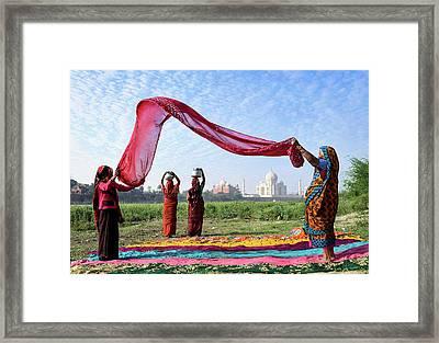 Morning Chore Framed Print
