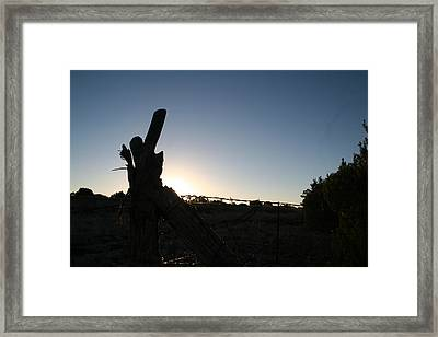 Framed Print featuring the pyrography Morning by David S Reynolds