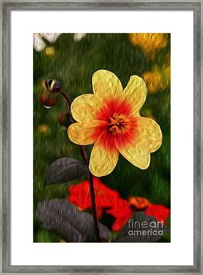 Morning Dew II Framed Print