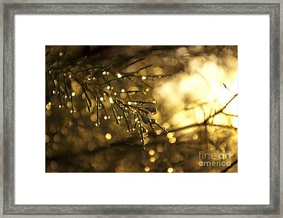 Framed Print featuring the digital art Morning Dew by Serene Maisey