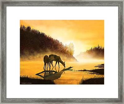 Morning Drink Framed Print by Douglas Castleman