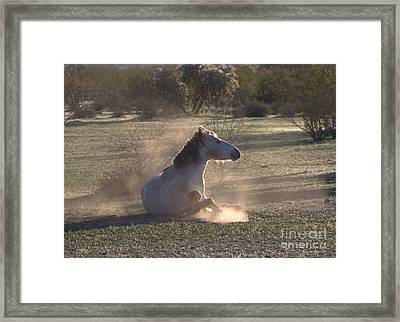 Framed Print featuring the photograph Morning Dust Bath by Ruth Jolly