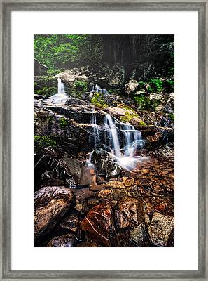 Morning Falls  Framed Print