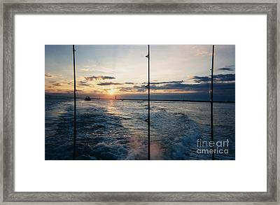 Framed Print featuring the photograph Morning Fishing by John Telfer