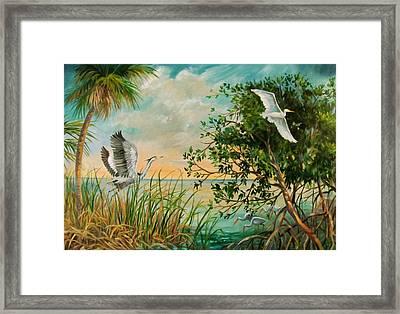 Morning Flight Framed Print by Dianna  Willman