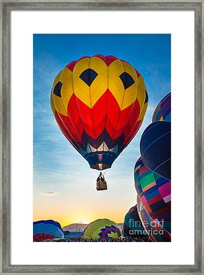 Morning Flight Framed Print by Inge Johnsson