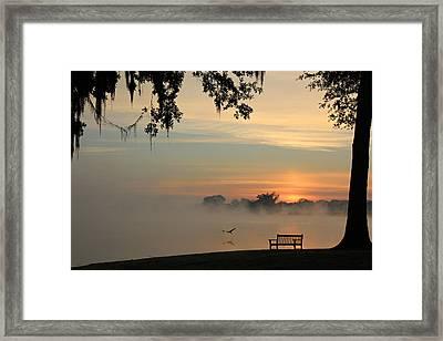 Morning Flight Framed Print by Leslie Kirk