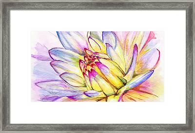 Morning Flower Framed Print