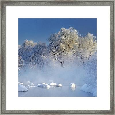 Morning Fog And Rime In Kuerbin Framed Print