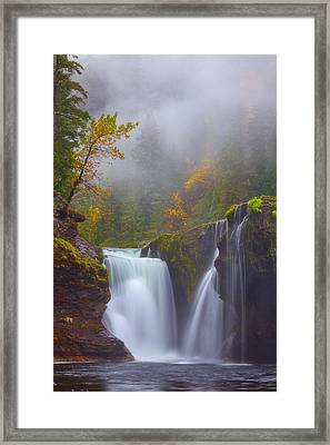 Morning Fog Framed Print by Darren  White