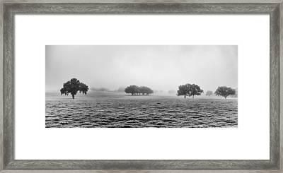 Morning Fog Framed Print by Howard Salmon