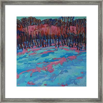 Morning Forest Framed Print