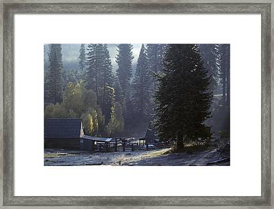 Framed Print featuring the photograph Morning Frost At Dawn by David Bailey