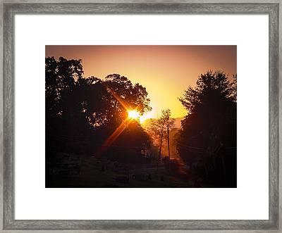 Morning Glare Framed Print by Robert J Andler