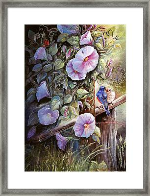 Morning Glories And Bluebirds. Framed Print by Patricia Schneider Mitchell