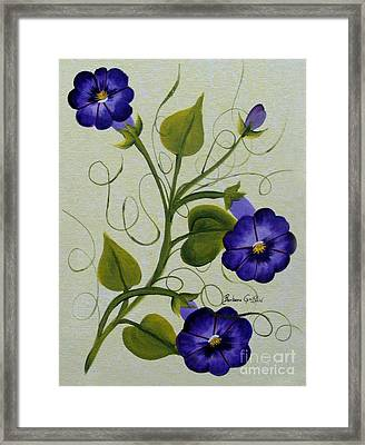 Morning Glories Framed Print by Barbara Griffin