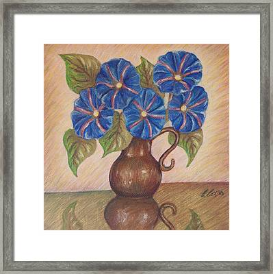 Morning Glories With Pink Background Framed Print by Claudia Cox