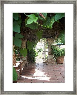 Morning Glory Arbor Framed Print