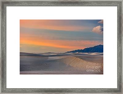 Morning Glory In White Sands Framed Print by Sandra Bronstein