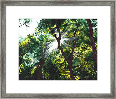Morning Glory Framed Print by Joe Burgess