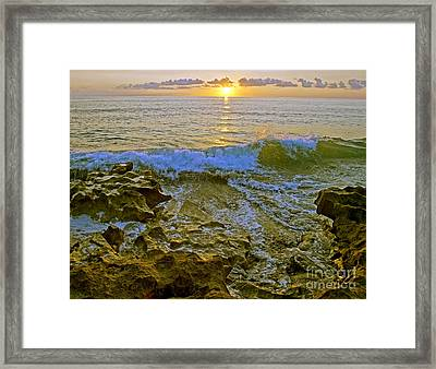 Framed Print featuring the photograph Morning Glory by Larry Nieland