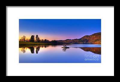 Morning Glory Framed Prints