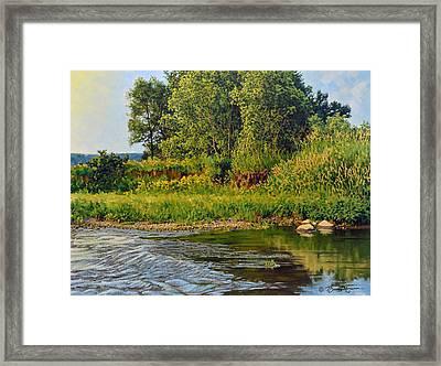 Morning Glow Framed Print by Bruce Morrison