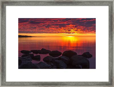 Morning Glow Framed Print by Mary Amerman