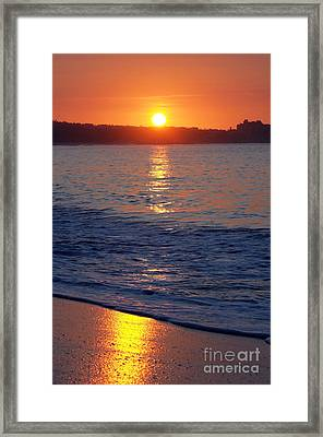 Morning Gold Framed Print by Dan Holm