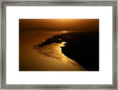Morning Gold Framed Print by Rohit Chawla