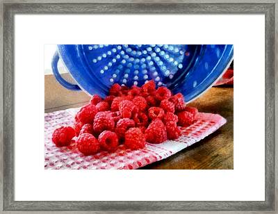 Morning Harvest Framed Print by Michelle Calkins