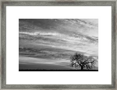 Morning Has Broken Like The First Dawning Landscape Bw Framed Print by James BO  Insogna