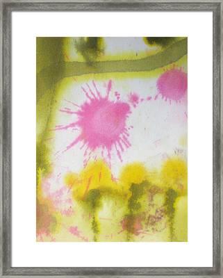 Morning Has Broken Framed Print by Malinda Kopec