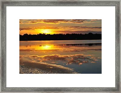 Morning Has Broken Framed Print by Michele Kaiser