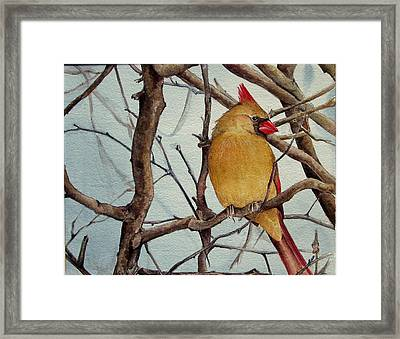 Framed Print featuring the painting Morning Herald by Margit Sampogna