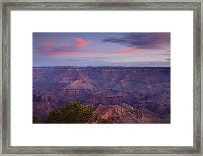 Morning Hike Into The Grand Canyon Framed Print by Andrew Soundarajan