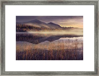 Morning In Adirondacks Framed Print by Magda  Bognar