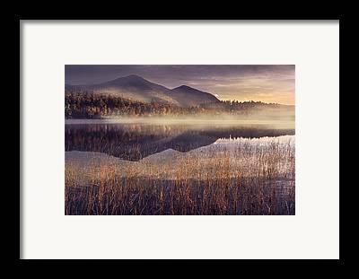 Fog Framed Prints