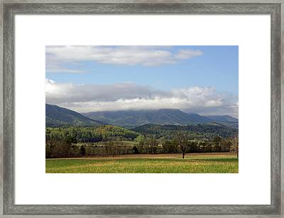Morning In Cades Cove Framed Print by Roger Potts