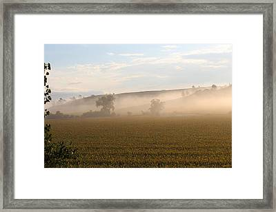 Morning In Iowa Framed Print by Angie Phillips