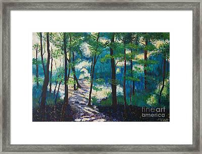 Morning Sunshine In Park Forest Framed Print by Arthur Witulski