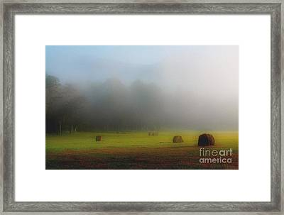 Morning In The Cove Framed Print