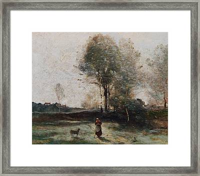 Morning In The Field Framed Print