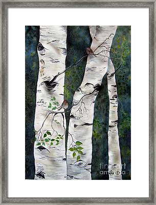 Morning In The Grove Framed Print by Anderson R Moore