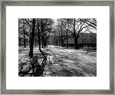 Framed Print featuring the photograph Morning In The Hofgarten by Ross Henton