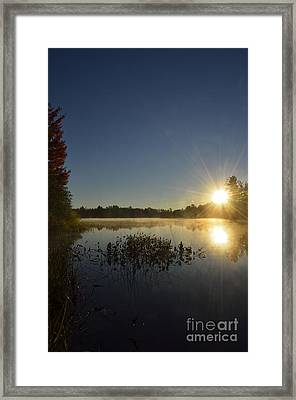 Morning In The North Woods Framed Print by Birgit Tyrrell