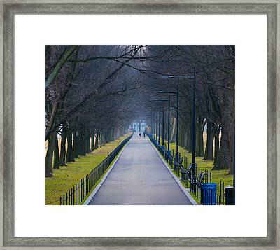 Morning In Washington D.c. Framed Print